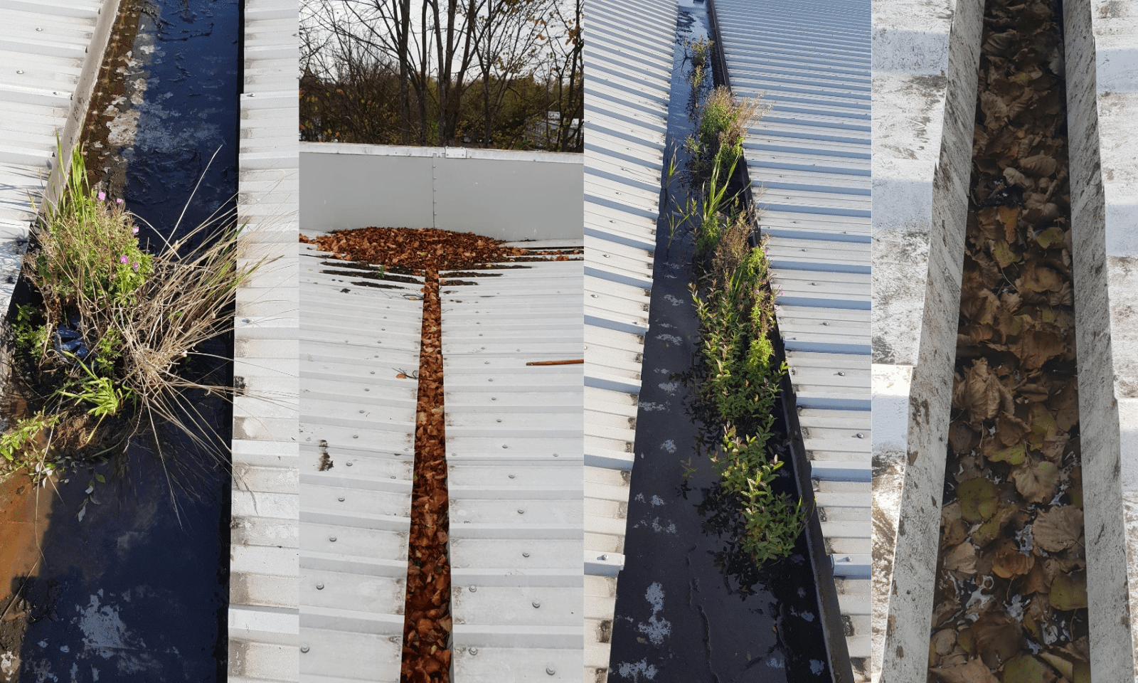 Why is gutter cleaning so important for your roof?