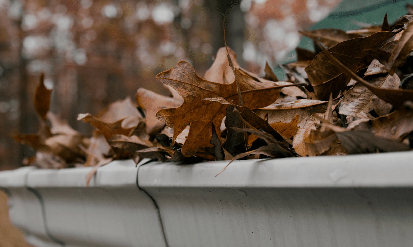 Winter is coming! Protect your roof with regular inspections